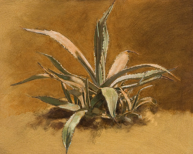 "Agave Study for S&T (oil on canvas-board, 16"" X 20"".) Paintings, Studies. Indirect painting methods, underpainting, wipeout, grisaille. Study of the agave plant seen in S&T on the lower left side of the portrait, just beyone the metal border of the deck. Pale cool greens, set against a warm umber background. © Manny Cosentino, 2006."