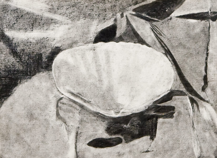 "Scallop Study 3 (pencil on paper, 9"" X 12"", 1981) Manny Cosentino Drawings"